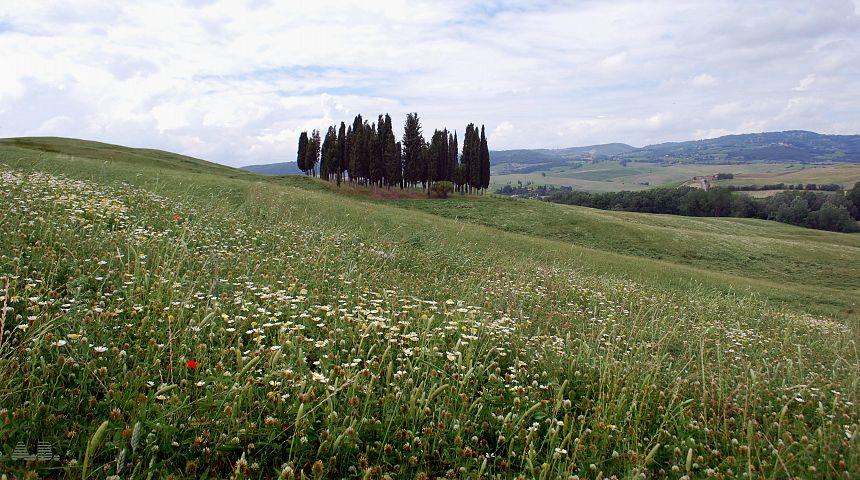 Terme Bagno Vignoni Libere: Terme libere da nord a sud italia.